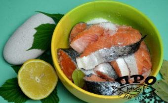 малосольный лосось в домашних условиях