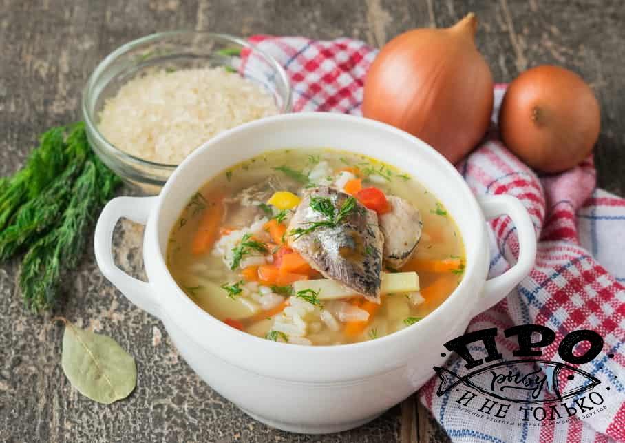 суп из свежей рыбы рецепт с фото відеозйомка